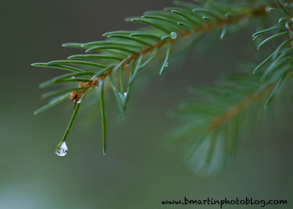 Water droplet with cheer